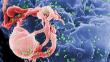El avance en la lucha contra el sida es el logro científico del año