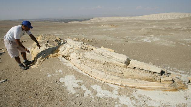 Malogrados. Yacimientos paleontológicos sufieron daños irreparables en Ocucaje. (César Fajardo)