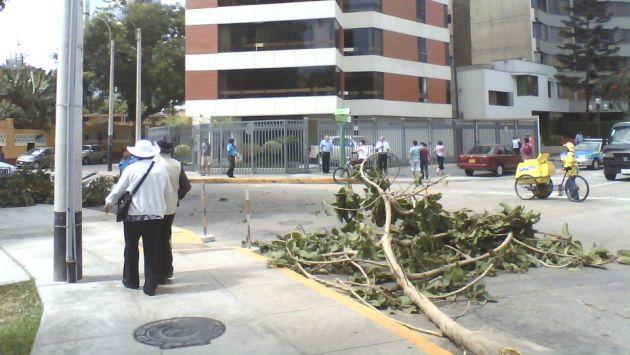 Foto: Edinson Paredes Albújar