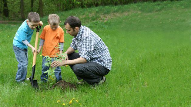 Ense a desde casa sobre la responsabilidad ambiental - Los mejores ambientadores para el hogar ...