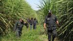 Chiclayo: Policía busca en los cañaverales al avezado 'Picoro' - Noticias de aderly spencer