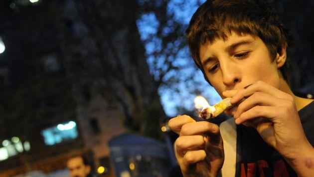 Marihuana tendría un uso recreativo y medicinal. (EFE)