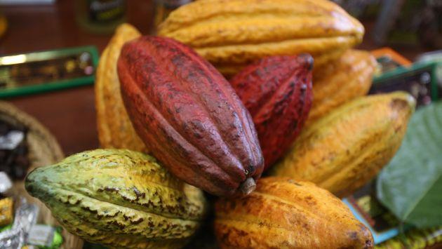 El Perú es una de las naciones con mayor calidad en la producción de cacao. (Martín Pauca)