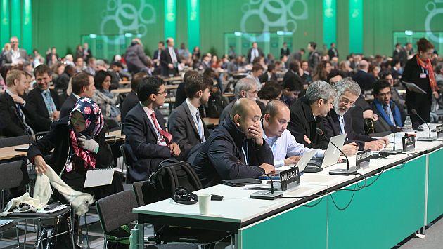 Se avanzó también en un programa para reducir la deforestación. (EFE)