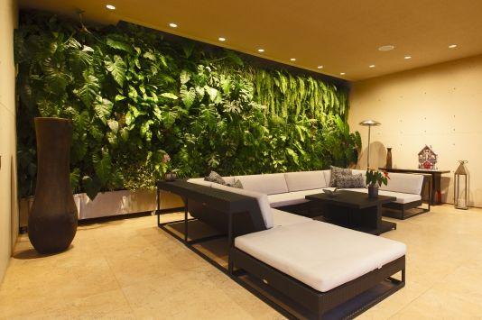 Jardines verticales una opci n de decoraci n para tu for Paredes verticales de plantas