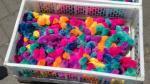 Denuncian que pollitos teñidos de colores son vendidos en Trujillo - Noticias de natalia pinillos saer