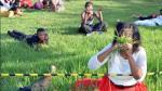 Sudáfrica: Obligan a comer pasto a fieles