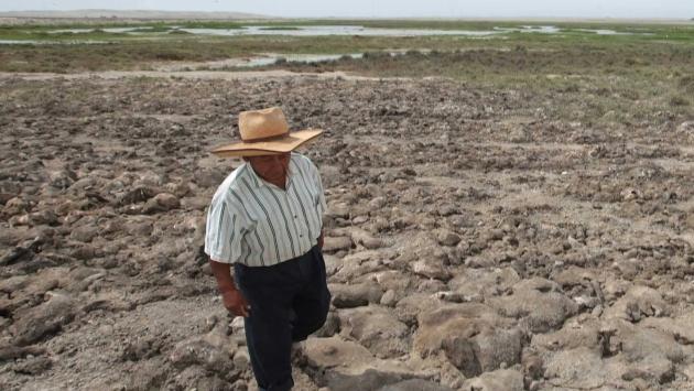 Agricultura y ganadería en emergencia por sequía. (USI)