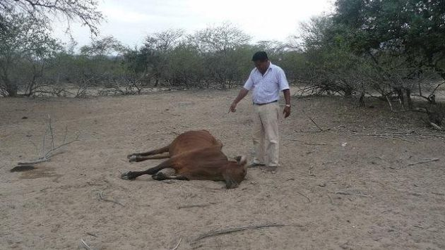Se utilizarán aguas subterráneas para combatir efectos de la sequía. (USI)
