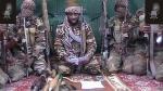 Boko Haram exige 800 vacas para liberar a las 20 mujeres secuestradas - Noticias de hombre se salva