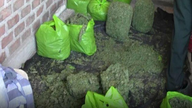 Capturan a cinco del 'Clan Lavado' con 100 kilos de marihuana. (Andina)