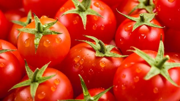 Los tomates refrigerados no hacen daño. (USI)