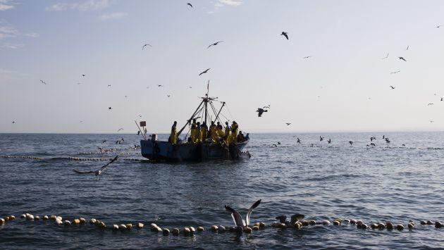 Vieira señala que quieren hacernos perder soberanía marítima. (USI)