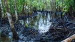 Gobierno reorganizará el directorio de Petroperú en los próximos días - Noticias de río marañón