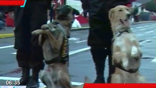 Canes cerrarán el desfile. (América TV)