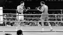 Box, Boxeo, Muhammad Alí, George Foreman, Rumble in the Jungle, La pelea del siglo