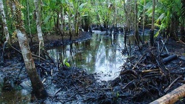 Resultat d'imatges de zonas afectadas por el petroleo