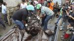 OMS: América Latina tiene tasa más alta de homicidios - Noticias de homicidio