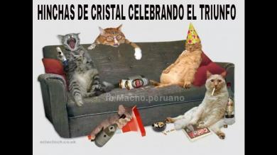 Sporting Cristal campeón: Memes del título y el triunfo sobre Aurich