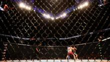 UFC, MMA