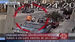 Lince: Adolescentes quemaron vivo a un gato dentro de un automóvil - Noticias de nikol sinchi
