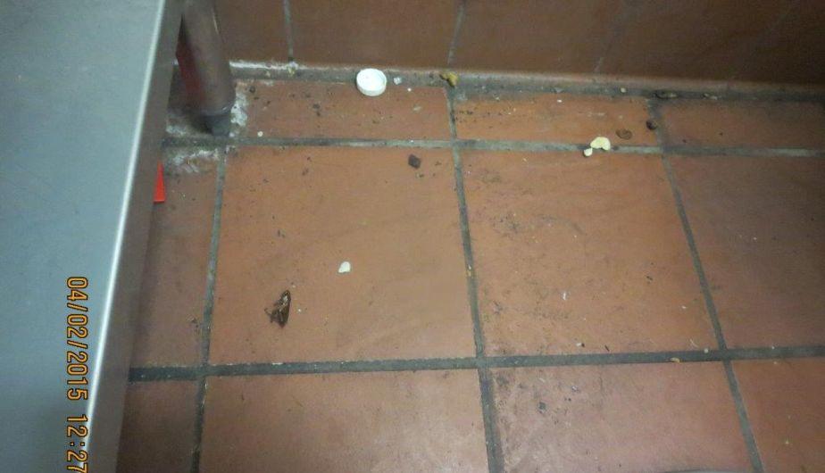 Clausuran local de Pizza Hut en La Molina por hallazgo de cucarachas. (Difusión)