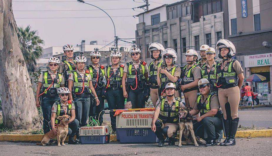 Policía Nacional lanzó Escuadrón 'Orejitas' para rescatar animales en abandono [Fotos]