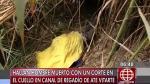 Ate: Hallan cadáver con rostro desfigurado en un canal de regadío - Noticias de desfigura rostro