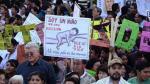 Bolivia: Un 74% está en contra de las bodas gays y 67% se opone al aborto - Noticias de estupro