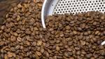 El café, uno de los cultivos alternativos en la lucha contra el narcotráfico