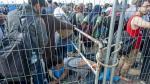 Hungría levantará otra valla en su frontera con Rumania para frenar el flujo de refugiados - Noticias de comida alemana