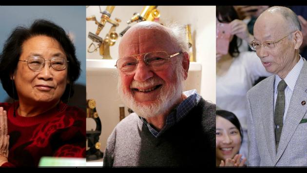 Un irlandés,un japonés y una china fueron galardonados. (Agencias)
