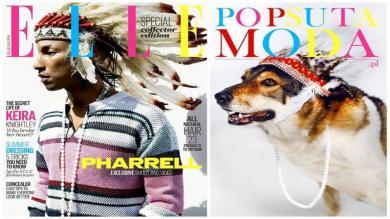 ¿Cómo serían las portadas de las grandes revistas de moda con perros de protagonistas? [Fotos]