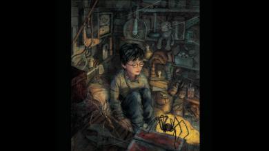 'Harry Potter y la piedra filosofal': Publicaron versión totalmente ilustrada