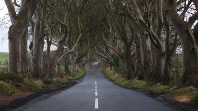 'Game of Thrones': Pintan por error carretera de la serie en Irlanda del Norte y fanáticos se enfurecen