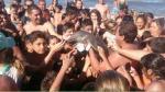 Argentina: Bañistas sacaron a delfín bebé del mar para tomarse fotos y el animal murió [Fotos y video] - Noticias de delfines muertos