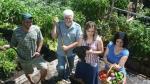 Conoce a la familia que produce 2,700 kilos de comida en el patio de su casa [Fotos y video] - Noticias de transgenicos