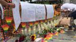 Comunidad LGBT reclama 'acciones contundentes' a la OEA para detener homofobia - Noticias de camila zavala