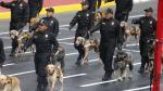 Parada Militar: Policía Canina se llevó los aplausos del público con esta presentación. (Anthony Niño de Guzmán)
