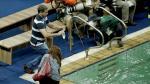 Río 2016: 'Piscina verde' fue clausurada por incomodidad de los atletas [Fotos] - Noticias de tom daley
