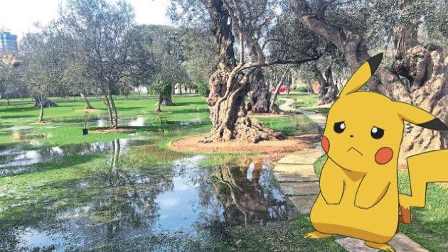 Le dicen no. San Isidro no permitirá evento masivo para jugar Pokémon Go en El Olivar. (Composición)