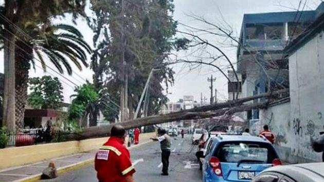 Fuertes ráfagas de viento se presentaron esta madrugada en la ciudad de Tacna. (Andina)