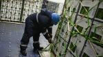 ADEX: Exportación de alimentos hacia China podría crecer 4 veces para el año 2021 - Noticias de john hartley