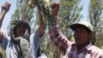 Arequipa: Policía advierte que podría haber protestas por el agua - Noticias de tomas valle
