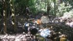 Se erradicaron más de 22,000 hectáreas ilegales de hoja de coca en lo que va de 2016 - Noticias de pucallpa