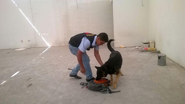 Arequipa: Perro antidrogas halló 14 kilos de clorhidrato de cocaína en caja de cambios de una camioneta