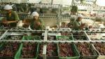 Menor costo logístico atraerá inversiones - Noticias de carlos niezen