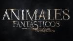 Saga de Harry Potter seguirá con precuela 'Animales Fantásticos' [Infografía] - Noticias de libro
