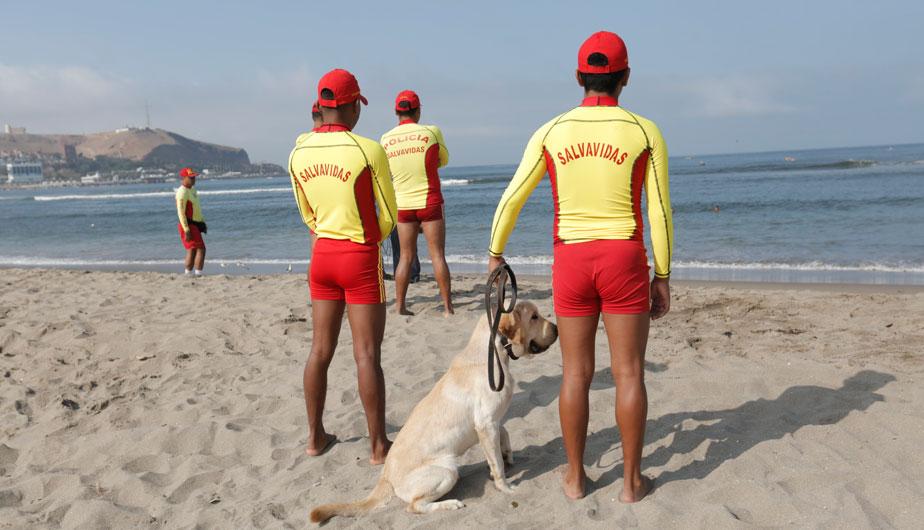Mira en acción a los perros salvavidas que vigilan las playas de Lima [Fotos y video]