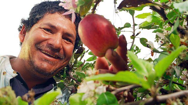 Anímese a incursionar en el amplio sector de los productos agrícolas. (Referencial)
